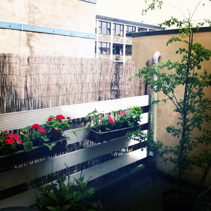 Terrace with nice flowers and plants