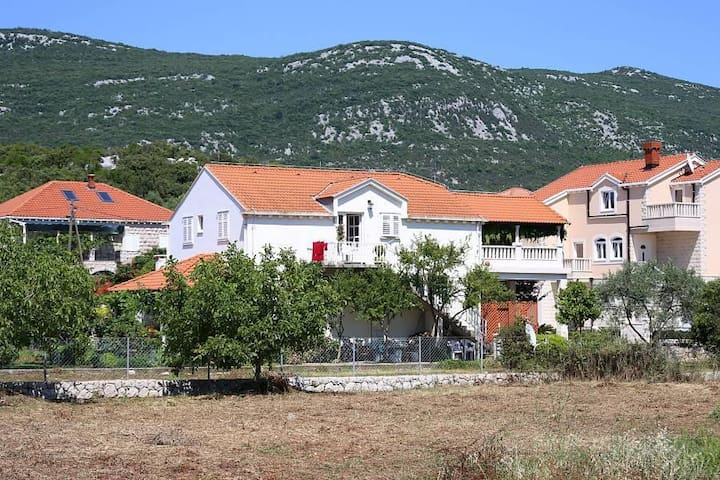 One bedroom apartment with terrace and sea view Mali Ston, Pelješac (A-10226-a) - Mali Ston - Apartament