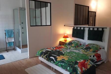 Jolie chambre dans une charmante maison à Eysines
