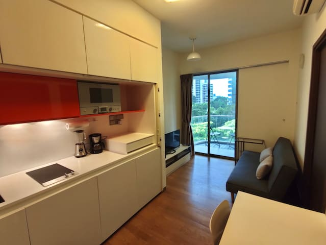 Luxury 1 BR Apartment @ Orchard Center
