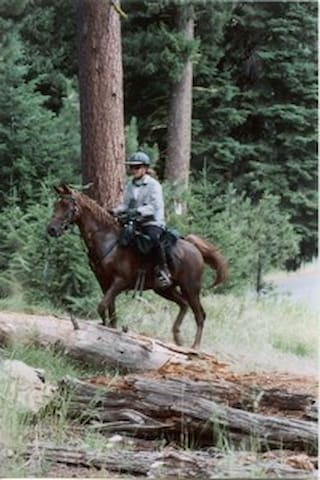 Horseback into the Enchanted Forest - Grants Pass - Baumhaus