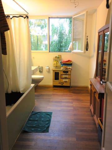 Beautiful and cosy flat in Basel