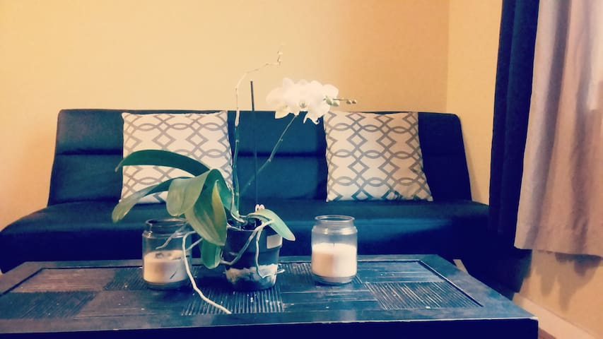 Lovely 1 Bedroom In Exciting Downtown Richmond - Richmond - Apartment