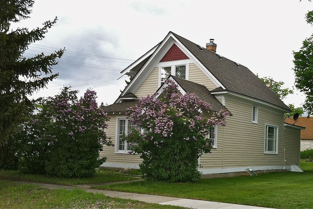 Front of house with lilacs in bloom in May.
