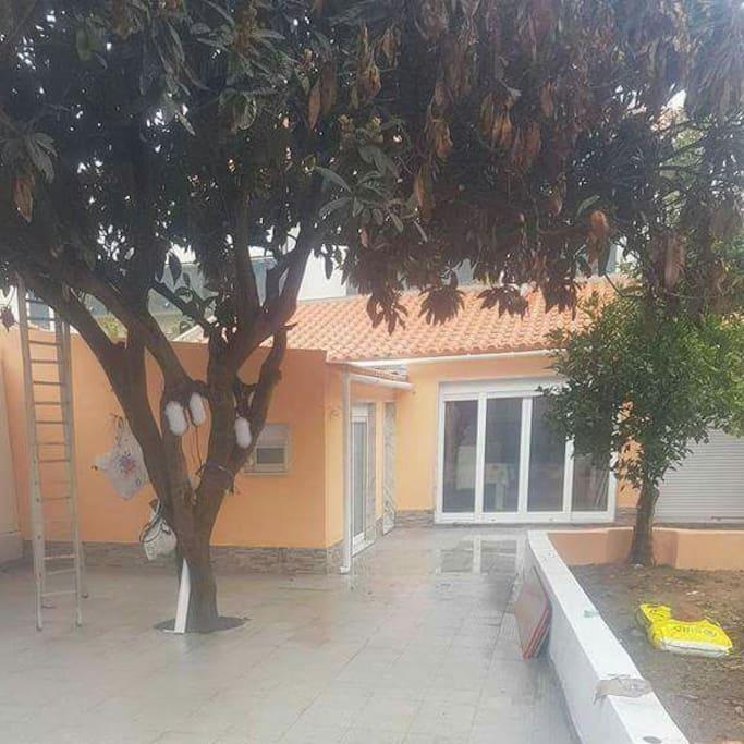 neflier côté parking  terrasse de 30 m2 avec magnifique citronnier devant la grande chambre. volet roulant électrique et double vitrage sur toutes les porte-fenêtre.