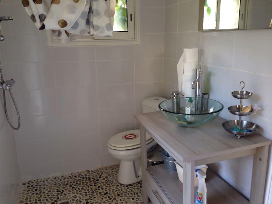 Douche toilettes vasque indépendant