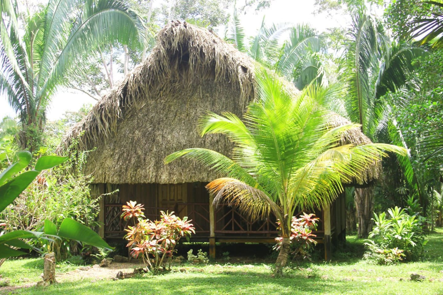 Villa Parrot with mayan-style thatch roof