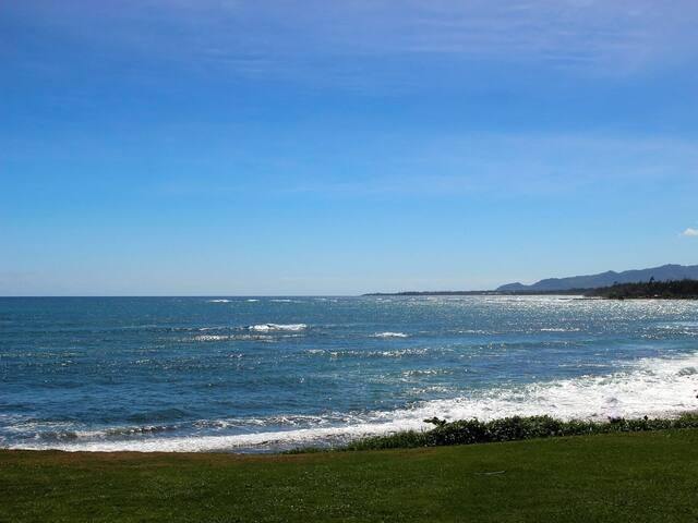 Direct Oceanfront 14