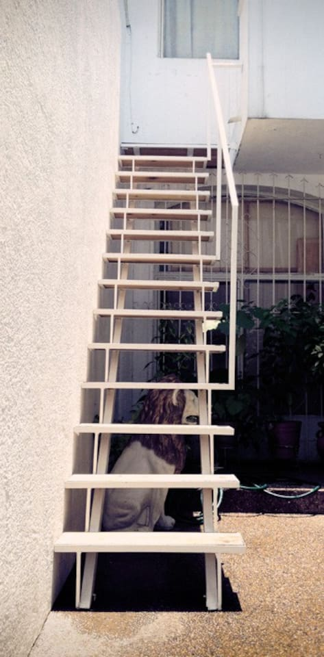 the stairs to your own private nano hipster loft in mty...lol
