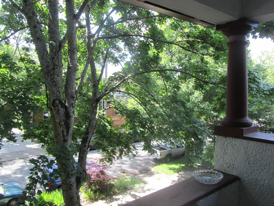 View of trees from balcony outside of the kitchen.