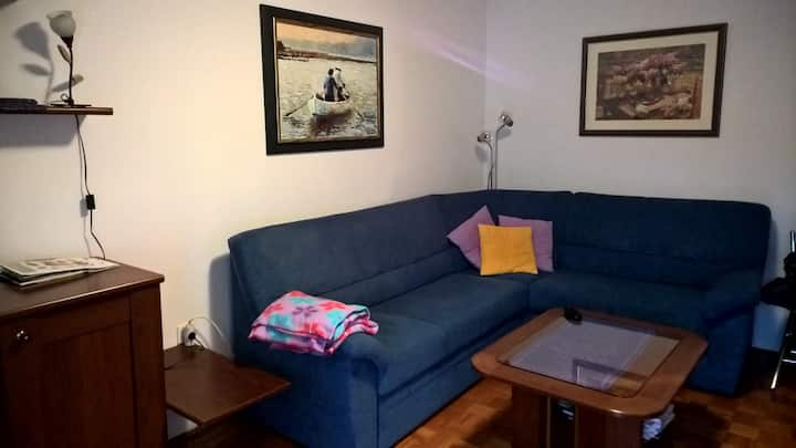 Rogla, Zreče:Family-friendly apartment