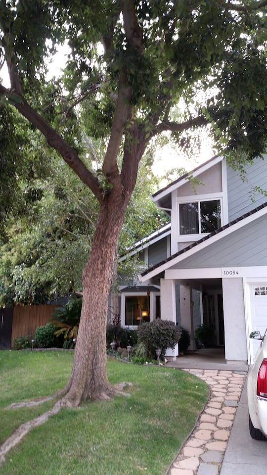 Home in a quiet neighborhood,  2 blocks from a huge park