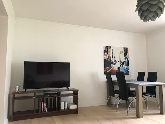 Modern apartment close to Oslo