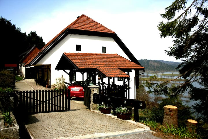 Old country home with a beautiful view - Planina - Pis