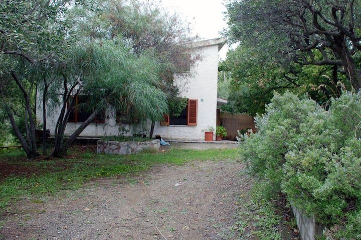 Villa Fiumarella mit Meerblick für bis zu 8 Pers. - Pisciotta-Caprioli - House