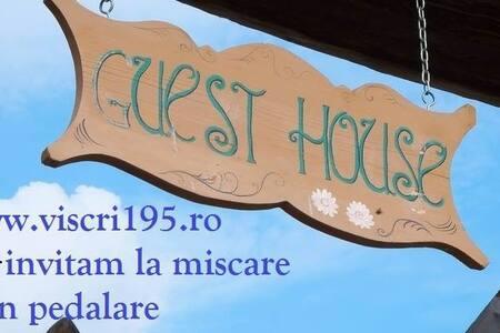 Guesthouse Viscri195