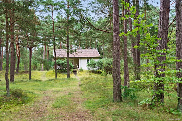 Cottage close to the sea in Yngsjö, 6 km from Åhus