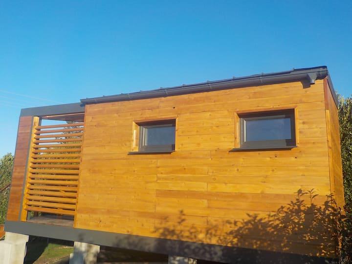 Saint-Sorlin-de-Vienne : maison bois avec vue