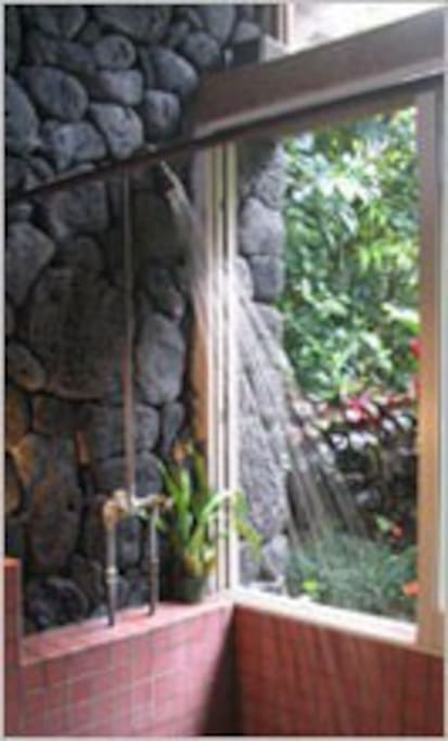 Shower with lava rock wall