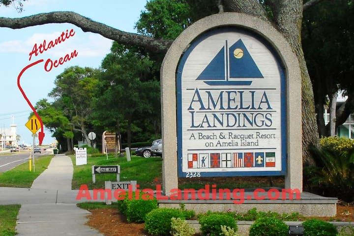 Impeccable Amelia Island Villa