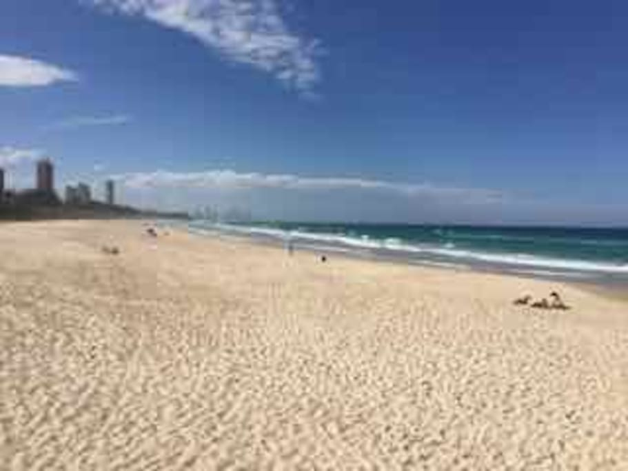Beautiful Burleigh Beach  (looking north)