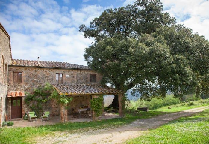 Organic Farm - Casetta al Leccio - Chiusdino