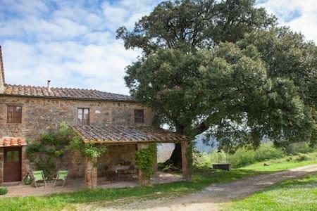 Organic Farm - Casetta al Leccio - Chiusdino - Talo
