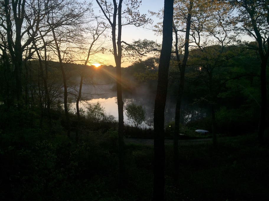 Pond view from our home at sunrise.