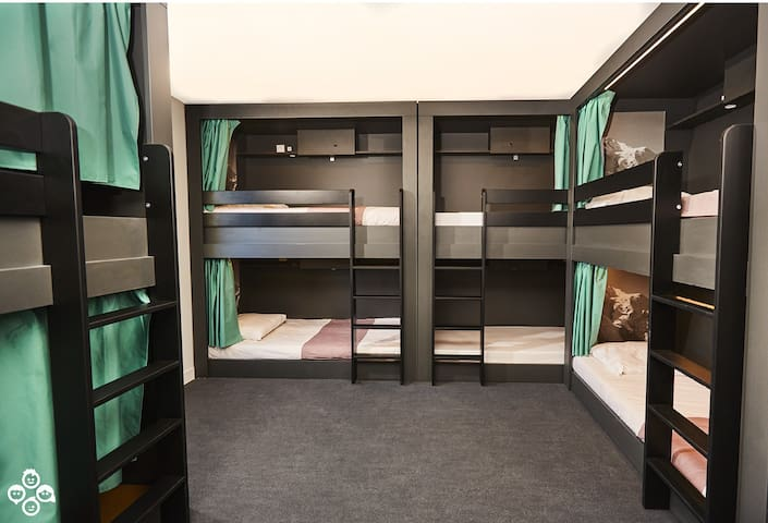 One Super Comfy Bed in a Shared Room of 8- BKF inc