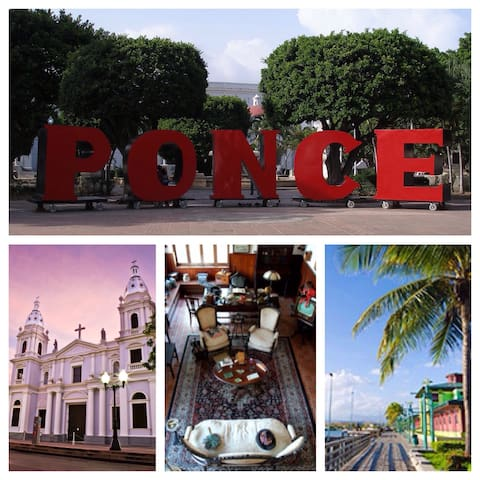 (B) CENTER OF PONCE, MINI STUDIO - Ponce - Flat