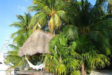 Best Islamorada Waterfront Paradise - Islamorada - Talo