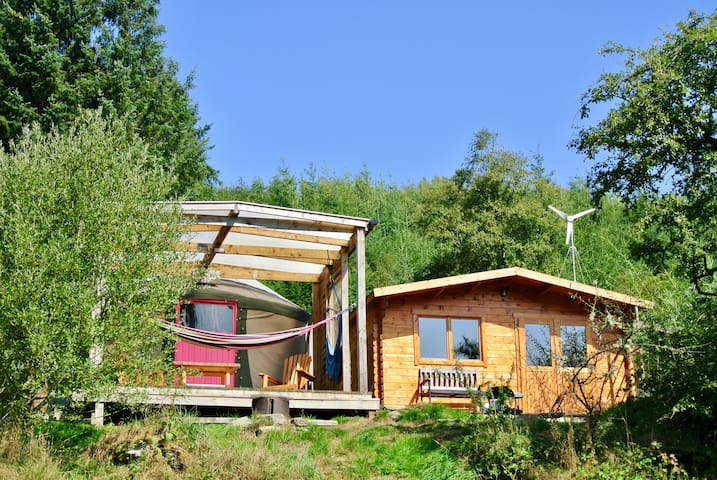 Gorgeous yurt in amazing mountain/forest location