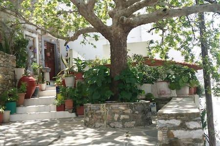 SMILIS house-filoti in the middle of Naxos island