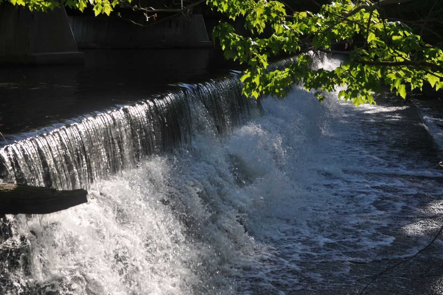 This spillway is a great place to hang out! (Ever had a freshwater massage?)
