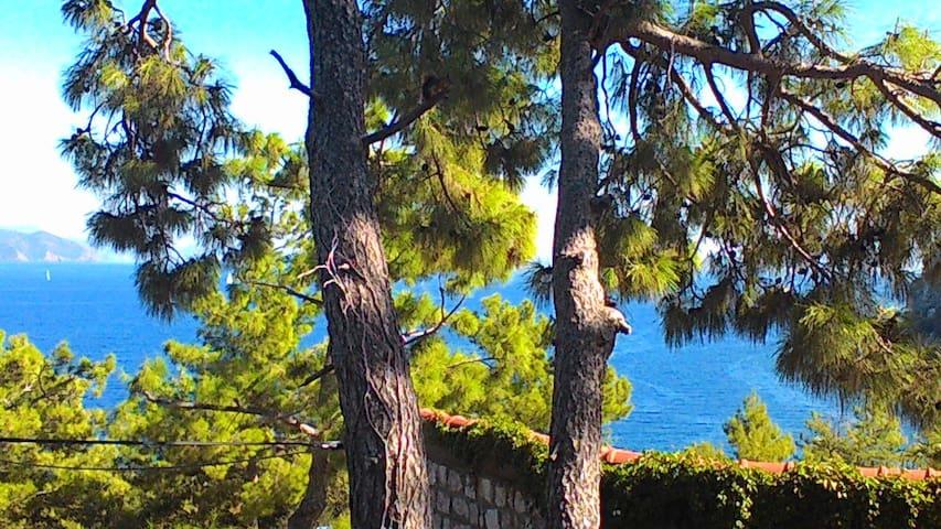 deniz, doğa, nefis manzara - Turunç Belediyesi - Ev