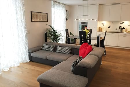 Entire and New Apartment, next to Airport and City - Wallisellen - Huoneisto