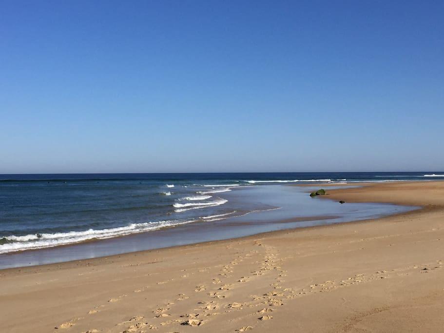 La plage de Seignosse