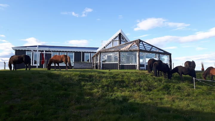Miðás - Farm Holidays and Horse Riding- Hut 2