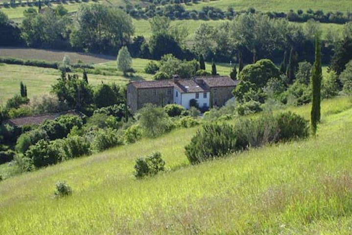 Antico Giuncheto Library - Magione - House