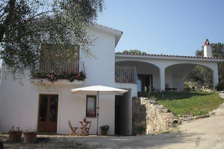 Grazioso appartamento  - Baia Sardinia - Apartemen