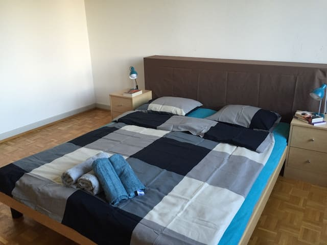 Business Trip 1BR Apartment - Close to UN - Genève