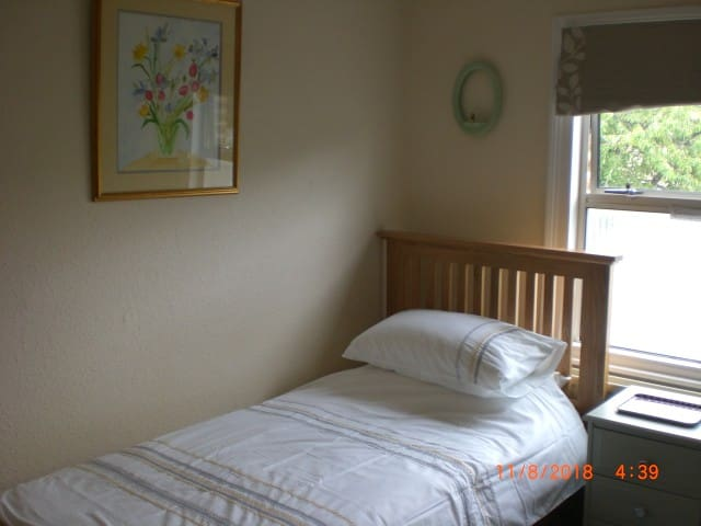 Private, Sunny, single room in Gipsy Hill