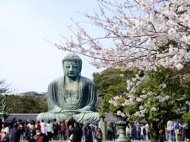 鎌倉市Kamakura 7on foot,Yokohama,観光に便利な場所,新築物件,Wifi付,