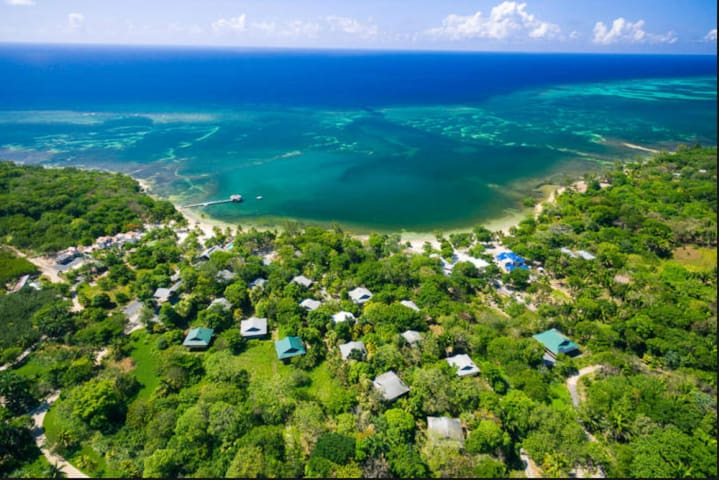 Roatan Island Boutique Resort - Jungle by the Sea - Palmetto Bay - Boetiekhotel