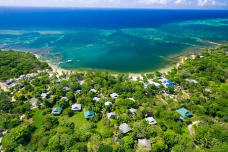 Roatan Island Boutique Resort - Jungle by the Sea - Palmetto Bay