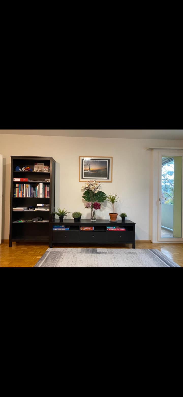 Cozy 3-room apartment in Basel-Land