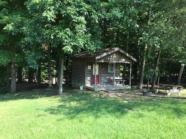 Primitive Cabin 12