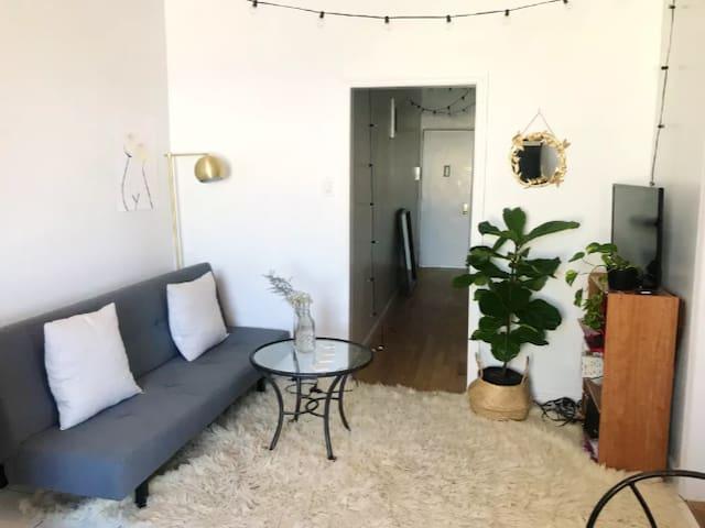 Sunny & Spacious Room