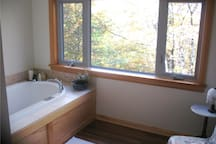Private ensuite bath with a view off the master bedroom