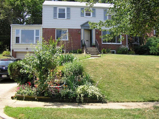 Spacious Basement Apt for rent - Cheverly